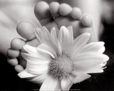 baby feet: Baby Girls Photo, Photo Ideas, Baby Feet, Flowers Toe, Fresh Flowers, Baby Pictures, Baby Photo, Beautiful Pictures, Photo Shoots