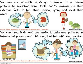 FREE!!  Cutest EVER Common Core SCIENCE STANDARDS Posters for PreK-3rd, w/ made-to-match Literacy & Math, Essential Questions & Social Studies posters also avail.... Follow for free 'too-neat-not-to-keep' teaching tools & other fun stuff :)