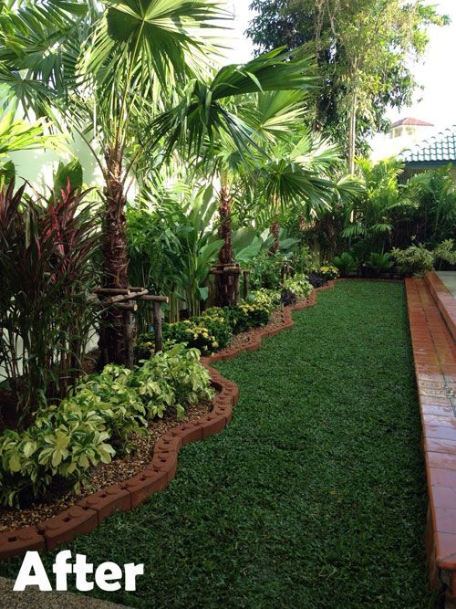 tropical palms and plants in a beautifully made edge