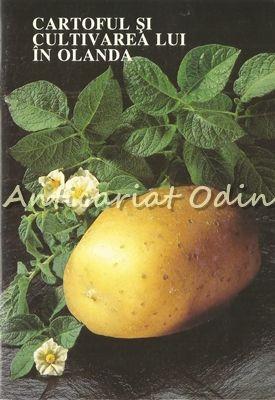 Cartoful Si Cultivarea Lui In Olanda - Dr. Ir. D. E. Van Der Zaag