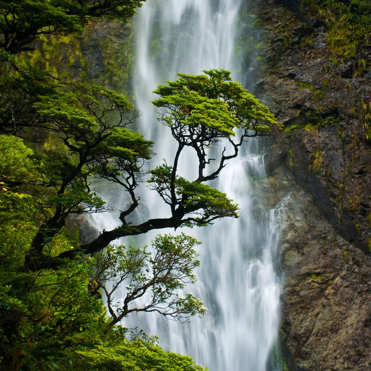 Devil's Punchbowl Falls in Arthur's Pass National Park, New Zealand.