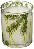Thymes Frasier Fir Poured Candle with Decorative Glass Jar - 6.5oz