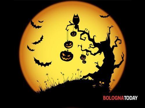 Emilia #Romagna: #Festa di #Halloween alla Montagnola: decorazioni e giochi a tema (link: http://ift.tt/2e5ViyB )