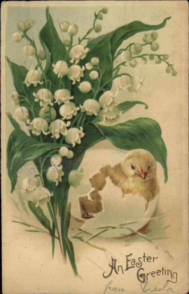 Vintage Easter Chick Hatching Beneath Lilies of the Valley Flowers c1905 Postcard