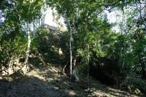 2012年12月21日人類滅亡説!? マヤ文明の遺跡、ティカル遺跡 ~グアテマラ~ ttikal13