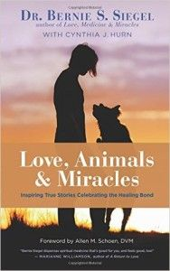 DREAMVISIONS 7 RADIO HOST BOOK CORNER: LOVE, ANIMALS, AND MIRACLES: INSPIRING TRUE STORIES CELEBRATING THE HEALING BOND AUTHOR BERNIE SIEGEL MD