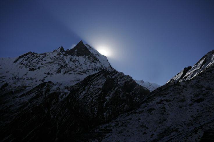 #Himalaya