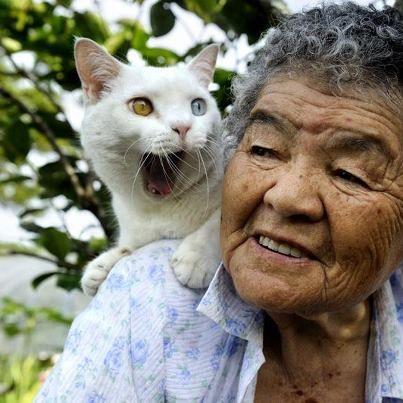 Miyoko Ihara has been taking photographs of her grandmother, Misao and her beloved cat Fukumaru since their relationship began in 2003. Their closeness has been captured through a series of lovely photographs. 1-09-13 / Miyoko Ihara