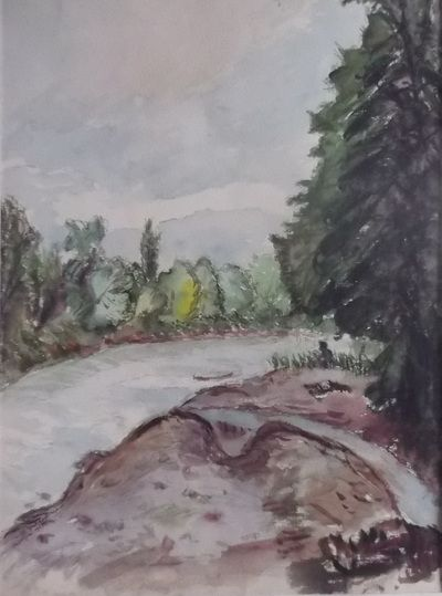 Mures river  (Timis, Romania) - the valley - 1970