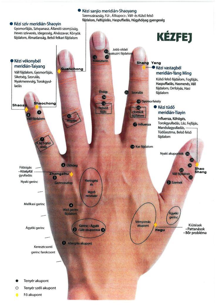 Kézdiagnosztika ‹ Vitamind