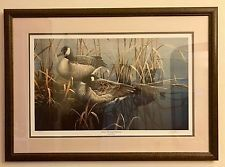 PACO YOUNG QUIET MORNING CANADAS GEESE Ducks Unlimited SIGNED PRINT 2040/5000