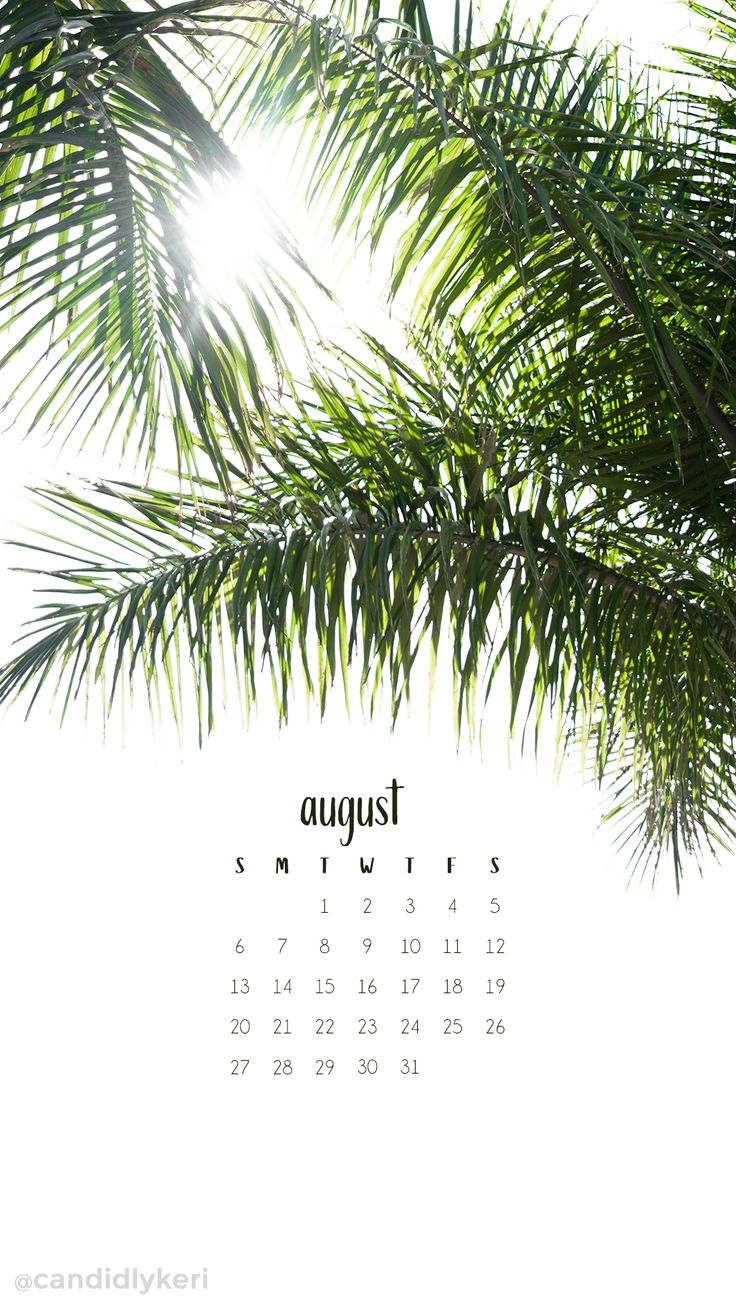 Palms greenery palm trees august calendar 2017 wallpaper you can download for free on the blog! For any device; mobile, desktop, iphone, android!