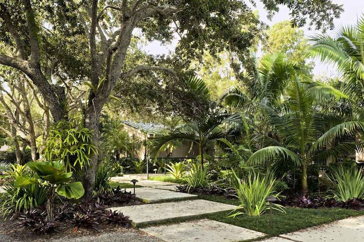 Small gardening designs for florida raymond jungle 39 s for Small tropical garden designs