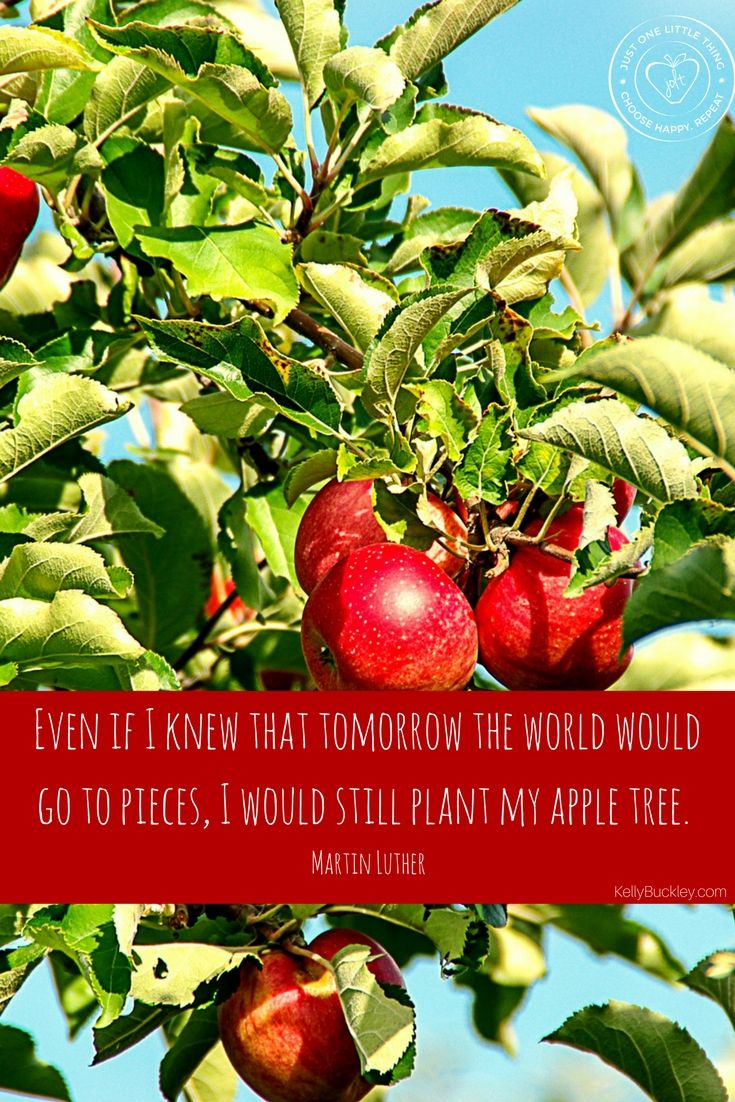Why not do the world some good today? Why wait for opportunity to come your way? Create it.