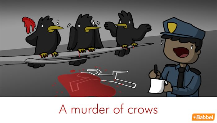 """Illustration: """"A Murder Of Crows"""" by James Chapman.   A few more """"terms of venery"""": An unkindness of ravens, a charm of goldfinches, an ostentation of peacocks, a huddle of penguins, a confusion of guinea fowl, a murmuration of starlings or a bellow of bullfinches. A prime example is a parliament of owls, created by CS Lewis in his Narnia series in the 1950s but now generally accepted in popular use."""