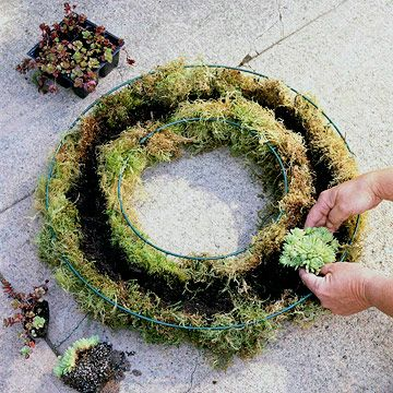 How to make a living wreath.  I like the idea of planting lettuce/greens and having a living salad available for dinner!