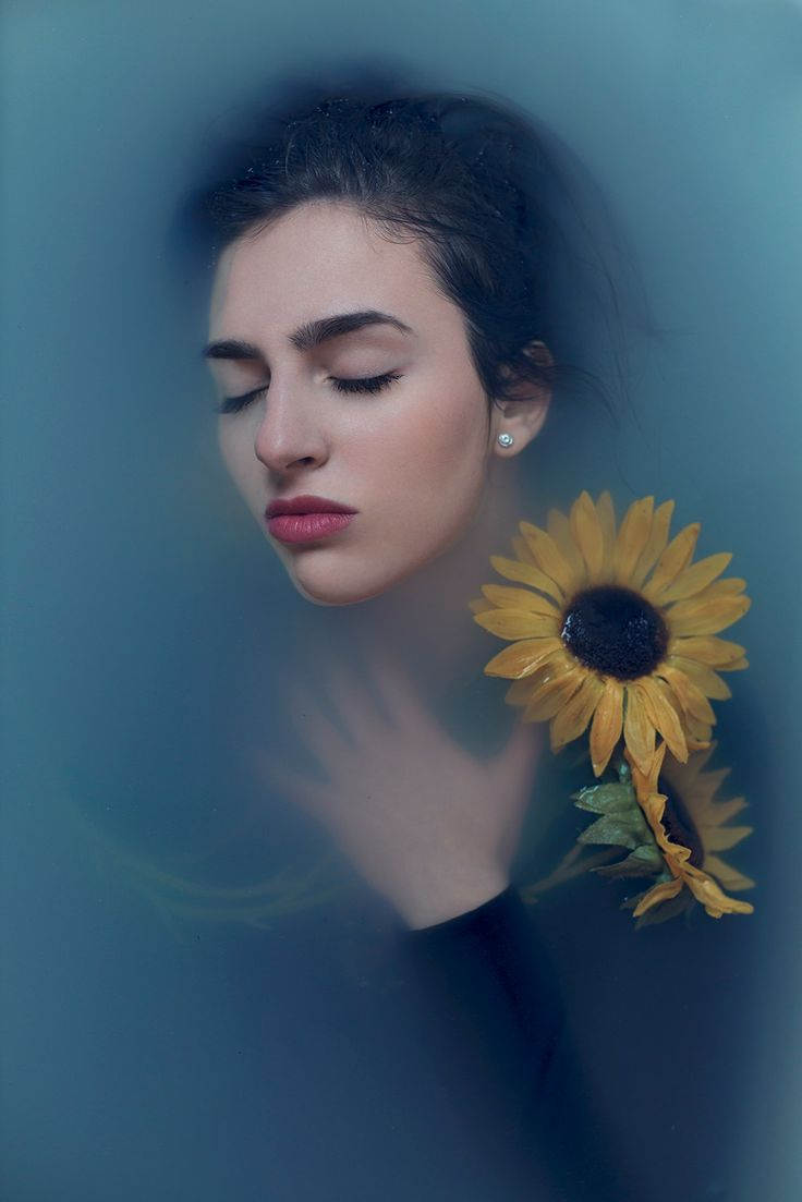 Yellow flowers - null