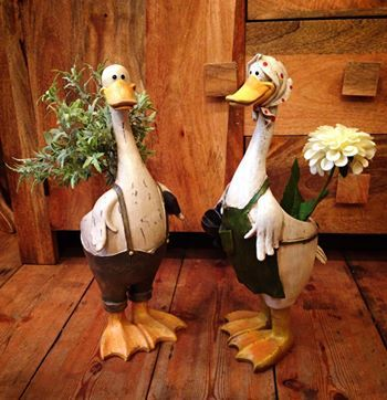 Duck planters! Even our ducks have started planting!