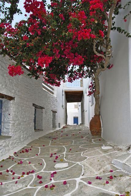 Afternoon walk in Chora (Kythnos island) full of spring's mood  Photo credit by Eamfos  www.porto-klaras.gr