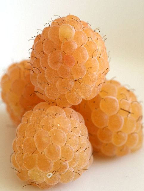yellow raspberries. fruit is to me what cake is to others