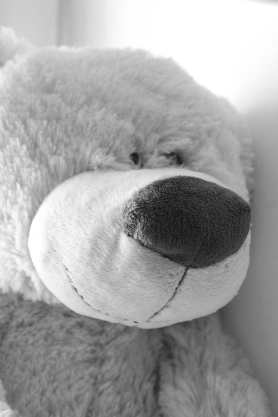 photographie ours en peluche en noir et blanc
