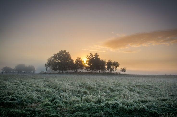 Frosty sunrise in the fog in Färingsö, Sweden