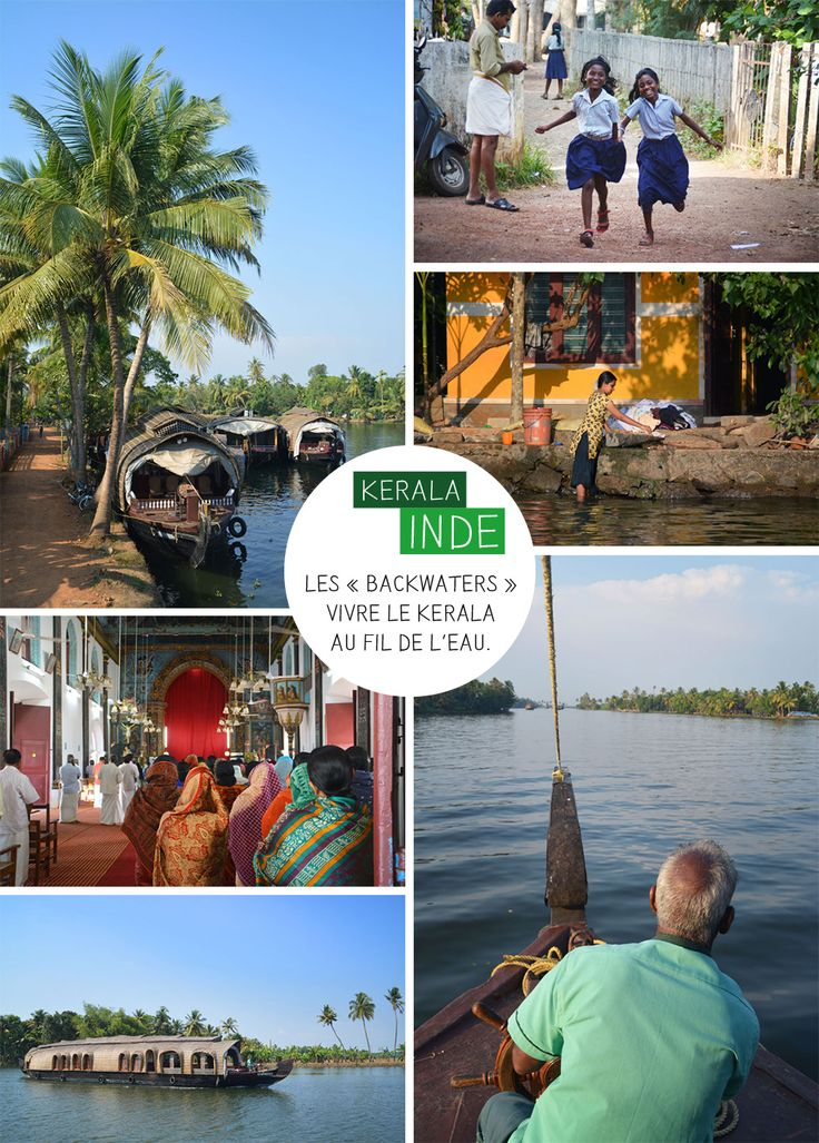 Les « backwaters » c'est un peu la carte postale typique du Kerala. Plus de 200 km de canaux, affluents, lagunes, rivières, bordés de palmiers et plantes tropicales plantées de part et d'autre de l'eau. Des paysages luxuriants à perte de vue, du vert partout où l'on pose le regard...