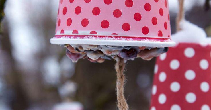 Ein Festessen für heimische Vögel. Kopfüber befestigt, ist das selbst gemachte Vogelfutter vor Wind und Regen geschützt.