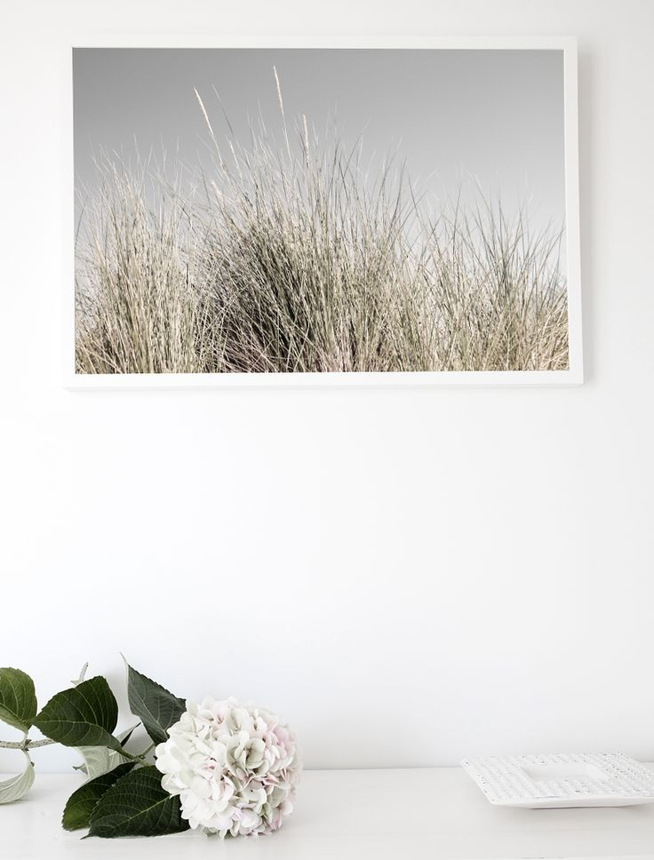 BEACH GRASS  Fine Art Photographic Print via Hedgerow+Stone. Click on the image to see more!
