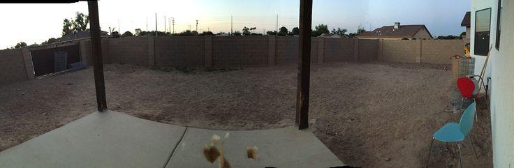 #pinmydreambackyard