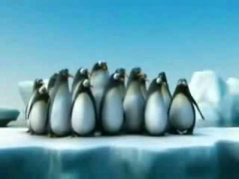 De kracht van samenwerken (short video)