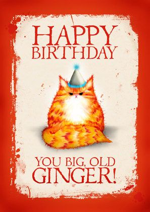 Birthday Cat Card Happy You Big Old Ginger & 1632