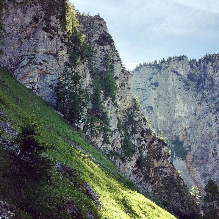 #mountains #alpen #sky #wilderness #wild #forest #tree #ferrata #traveling #travel #vocation #nature #live #wanderer #wandering #raxalpe #adventure #adventures #voyage #hiking #hike #qualitytime #getlost #holiday #mountinesarecallingsoimustgo
