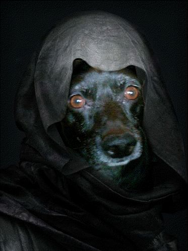 tails from the bark side black sabbath black sabbathgifshalloween soundsfree downloads - Free Halloween Sounds Downloads