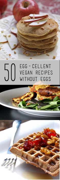50 Amazing Eggless Vegan Recipes! Awesome recipes from breakfasts to desserts! Everyone will find at least a dozen recipes here that they would Love to try!!! Tofu paneer , waffles, 'omelettes', 'quiche' , cheesecake... And so much more!! #vegan #eggless oh- there are also several recipes without photos in the very first paragraph ! I initially thought they only put up 47 recipes! ( comment by @paigeydoll1 )
