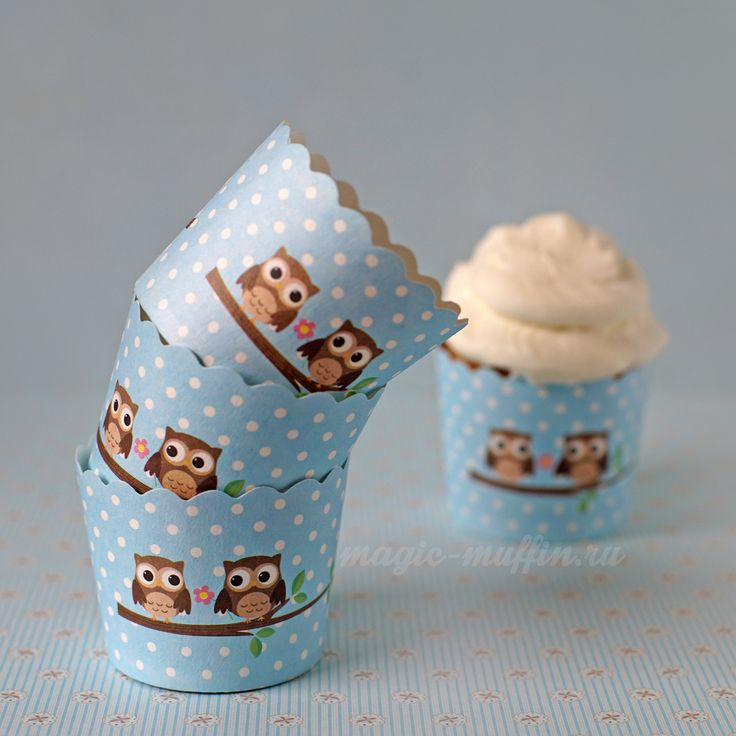 Картонные формочки: две совы на голубом, 6шт. капкейк маффин торт декор крем выпечка рецепт cupcake muffin cake cup baking frosting decor birthday