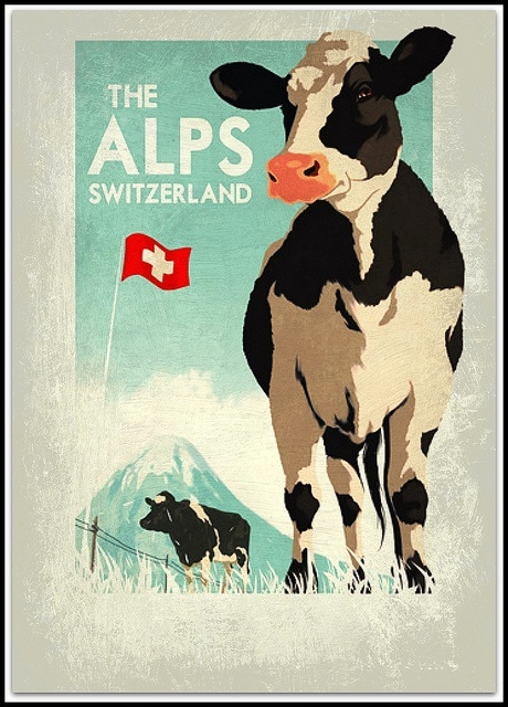 Swiss cow Cows And Cow Bells Pinterest