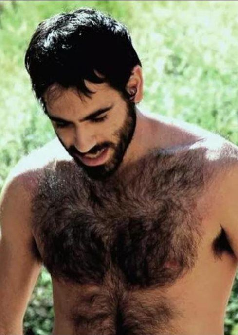 155 best ⭐️Very Hairy Chests⭐️ images on Pinterest