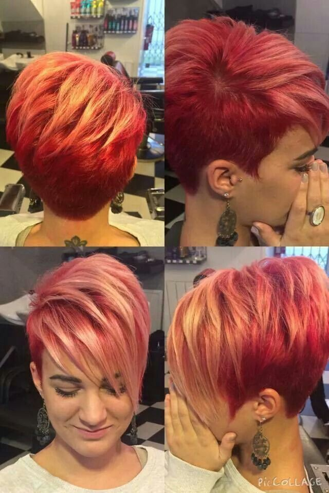 Coloring Ideas For Short Hair : Best 25 funky hair colors ideas on pinterest crazy colour