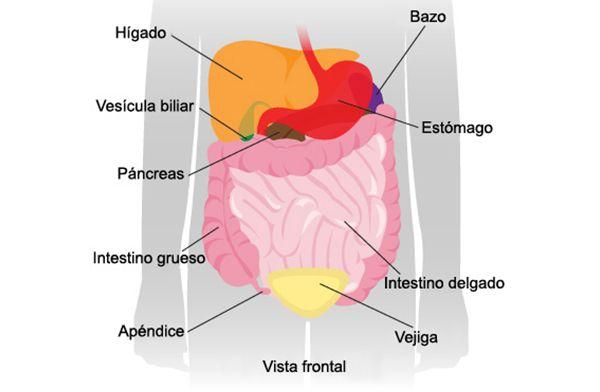 dolor debajo del vientre a la izquierda