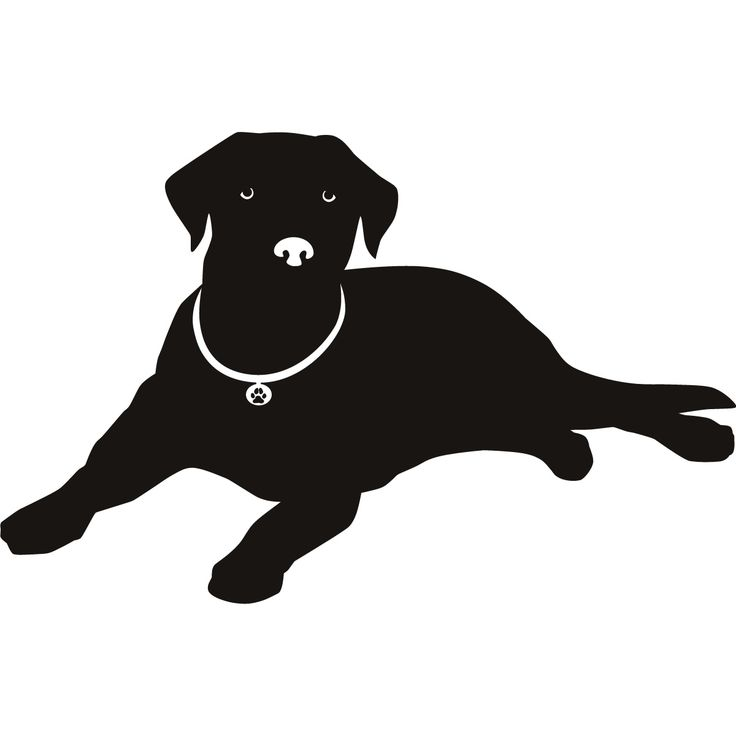 labrador silhouettes pictures | Labrador Nose Silhouette Dogs Wall ART Stickers Wall Decal Transfers ...
