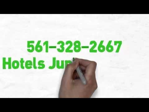 Racing Power Boats|561-328-2667|Jupiter FL 33458|Cigarette Speed Boats|Palm Beach Hotels|Hotel - YouTube #boats #Jupiter_Hotels_Florida
