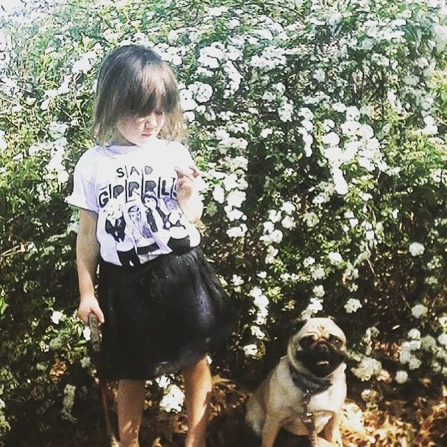 Daisy (pug not included with shirts)