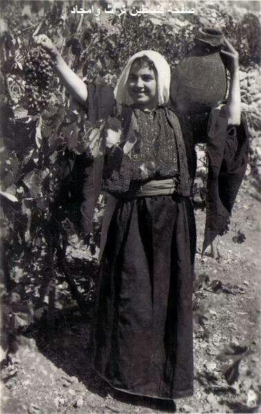 Al khaleel Grapes 1920 - 1930 - Palestine