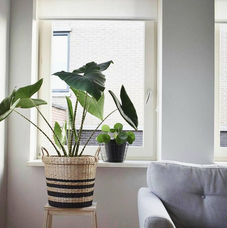 1000 idee n over mand decoratie op pinterest keukenmanden vintage manden en decoratieve - Deco kleine zithoek ...