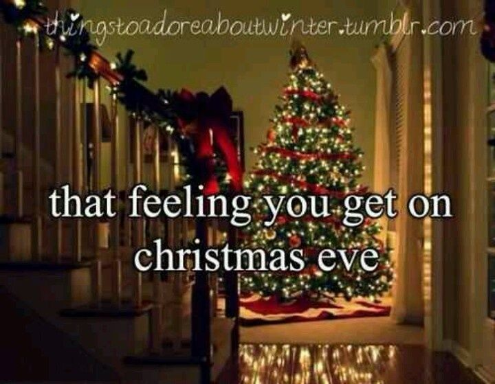 That Feeling You Get On Christmas Eve holidays christmas christmas quotes cute christmas quotes holiday quotes merry christmas eve christmas eve quotes christmas quotes for friends best christmas quotes beautiful christmas images with quotes christmas quotes with pictures christmas quotes for family christmas quote images christmas quote pictures christmas eve quote images
