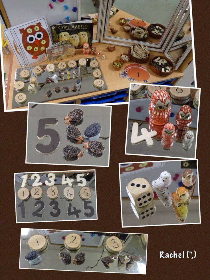 """Number exploration with hedgehogs and owls... from Rachel ("""",)"""