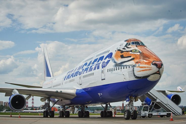 Transaero Airlines has painted one of its Boeing 747-400s in a striking tiger motif to promote the Amur Tiger Centre and promote the environmental and conservation issues surrounding rare species.