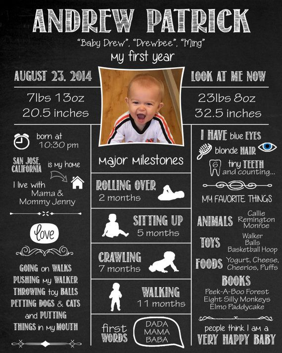 1st Birthday Sign  Year One Infographic  Baby's First
