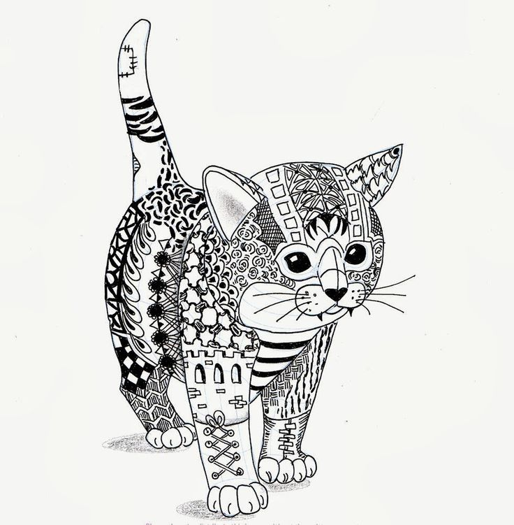 Finished adult coloring cat already coloring pages for Cat coloring pages for adults